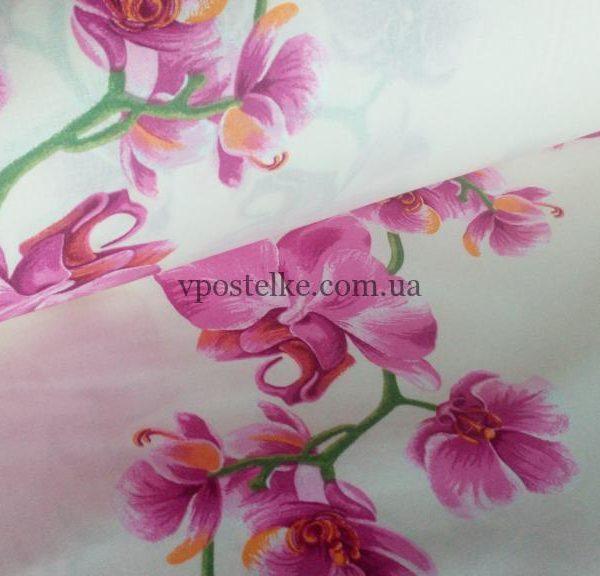 Постельное белье «Орхидея»